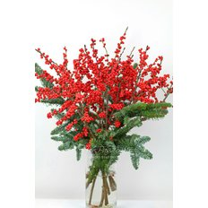 Ilex Bouquet