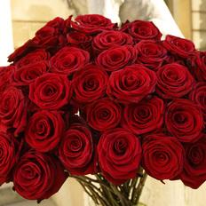Rose Rosse a Scelta