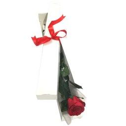 Cutie 1 fir de trandafir conservat