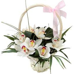 Cosulet cu orhidee (11)