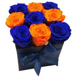 Simetrie in culori - albastru & portocaliu