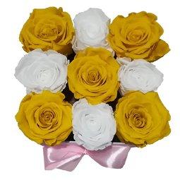 Simetrie in culori - galben & alb