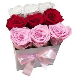 Simetrie liniara - rosu, roz si alb