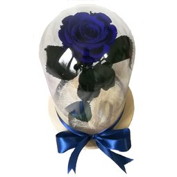 Dragoste si trandafiri nemuritori - albastru