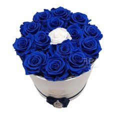 Blue Dream Rose Eterne