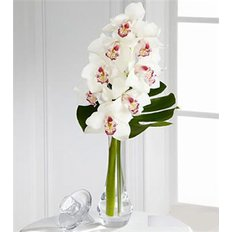 Bouquet con Orchidea Cymbidium