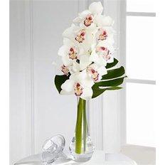 Orchidee Cymbidium Bouquet | Consegna Fiori Milano