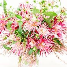 Dahlia Spider Woman Bouquet