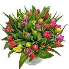 Tulips Bouquet | Real Florist Milan | Same Day Flowers Delivery