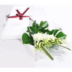 Dendrobium Orchids Bouquet | Flower Box Same Day Delivery Milan Monza
