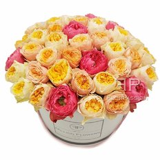 Garden Roses Million Flowers Box