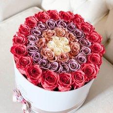 Gioia Forever Roses