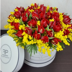 Tulipani Rossi e Mimosa Million Flowers Box | Fiori Milano