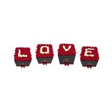 L O V E  Forever Roses