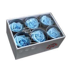 Light Blue Preserved Roses, 6pcs