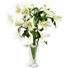 Lillium Longiflorum Bouquet
