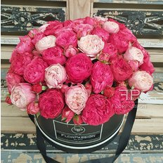 Garden Roses Box | Million Roses by FlorPassion