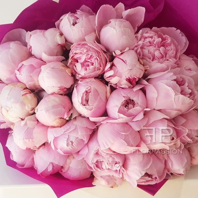 Pink peony send flowers to milan italy pink peonies bouquet mightylinksfo Gallery
