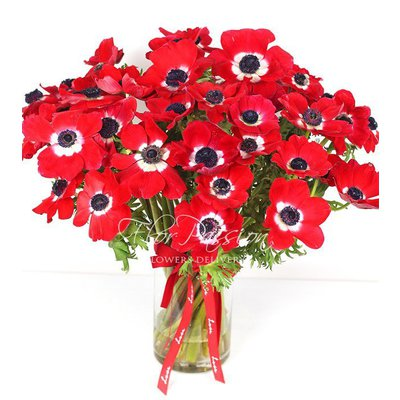 Red Anemons Bouquet
