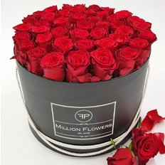 Red Roses Million Flowers Box Large