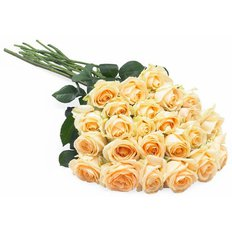 Peach Roses Delivery | Send Flowers to Milan and Monza