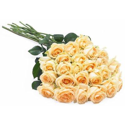 Rose Pesco