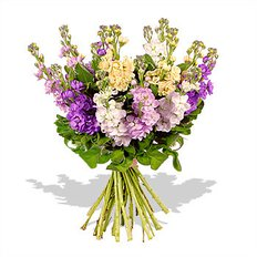 Stock Flower Bouquet
