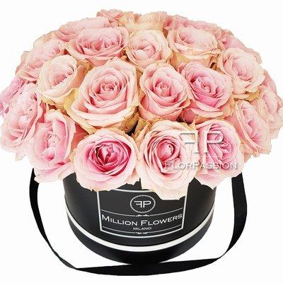 Sweet Pink Million Flowers Box