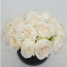 White O'Hara Rose Perfume