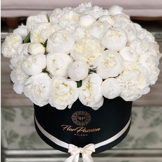 White Peonies FlorPassion Box