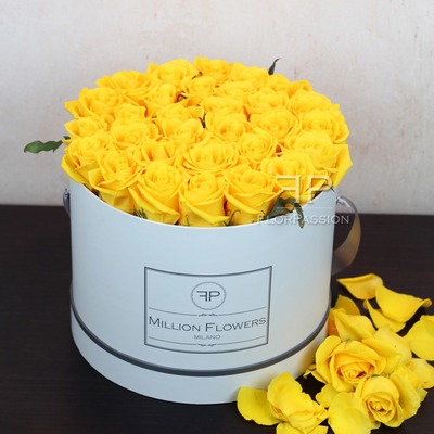 Luxury gift yellow roses box with same day delivery in milan italy yellow roses box mightylinksfo Image collections