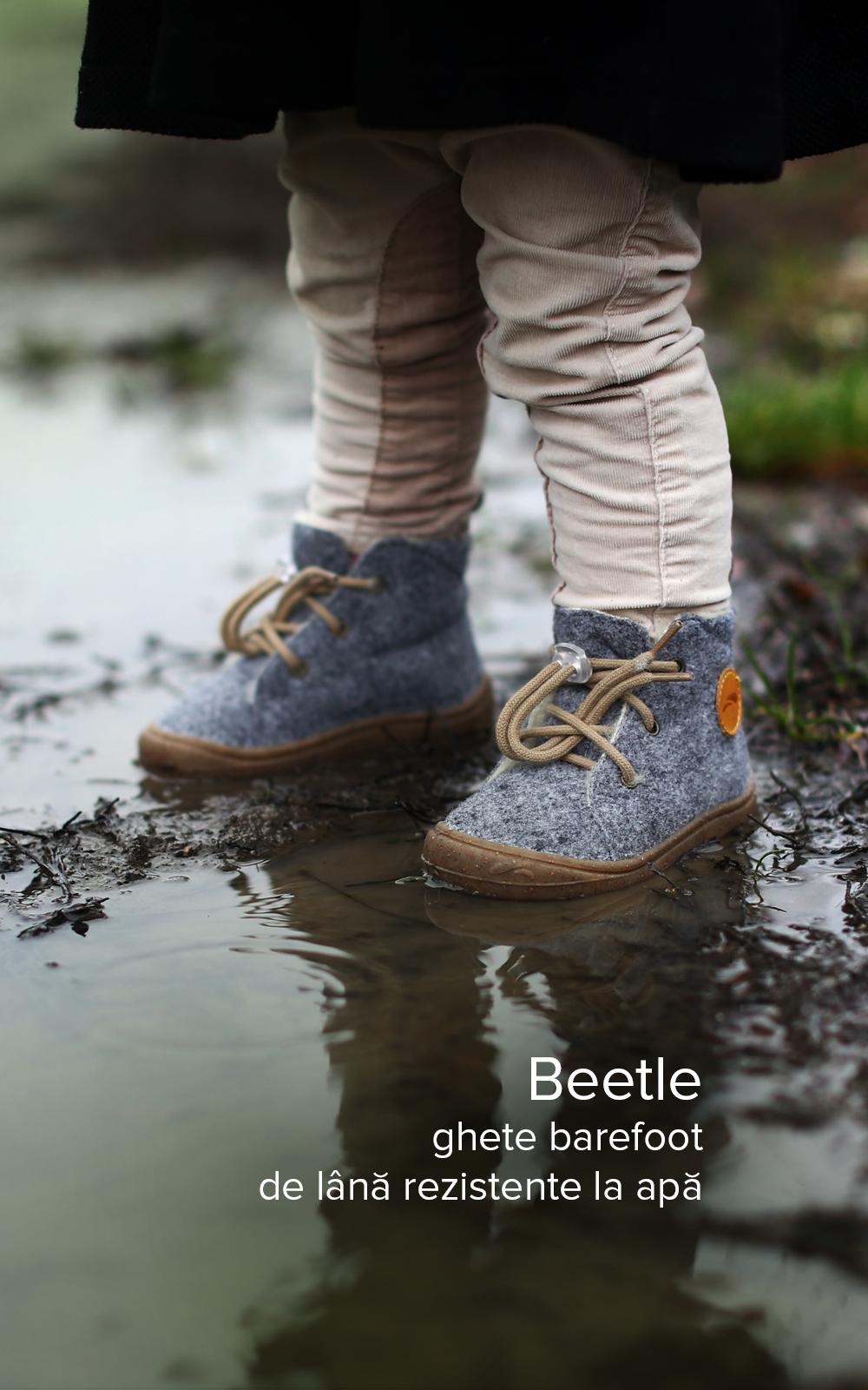 Beetle Ro